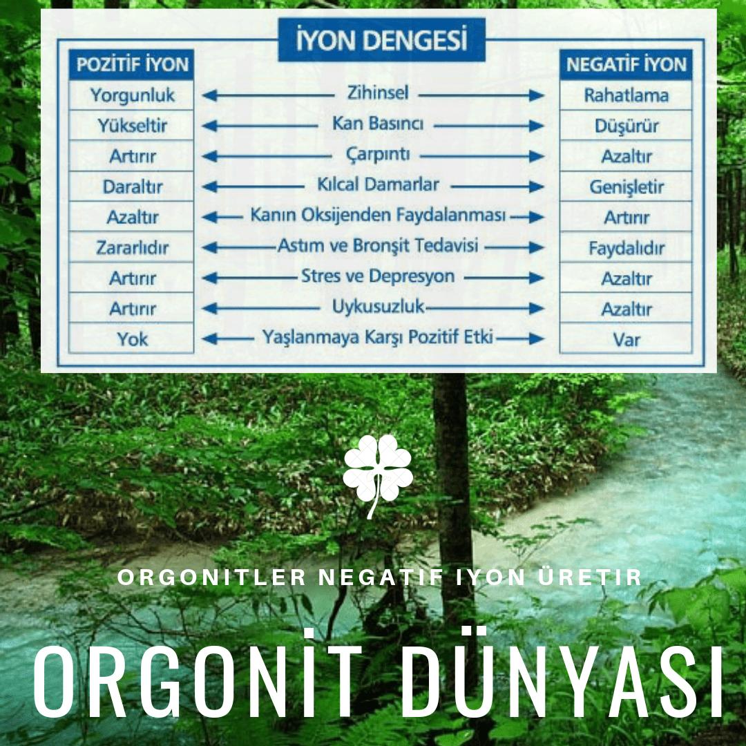 Orgonit